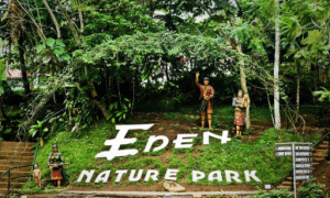Eden Nature Park Davao - AJTransport Davao Tour