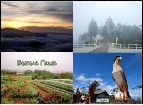 BUDA Marilog (Sonnenberg, Bemwa Farm) Tour Package #4