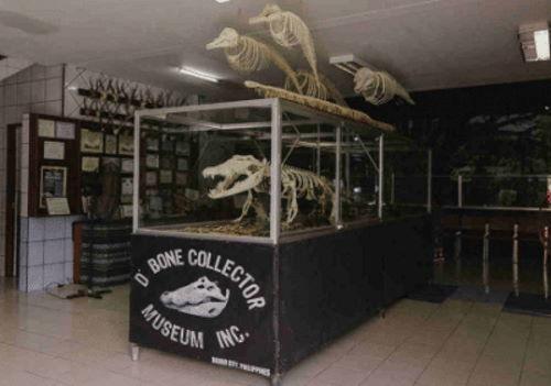D'Bone Collector Davao