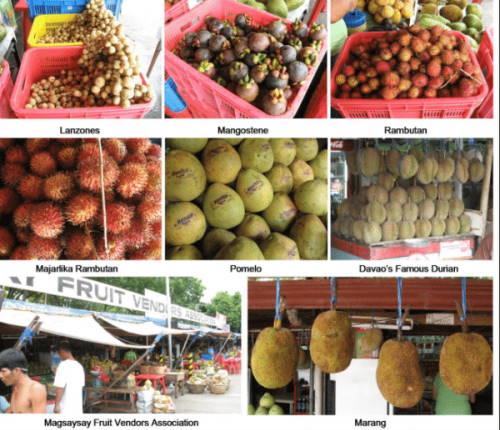 Fruit Stand Market Magsaysay, Bankerohan, Davao)